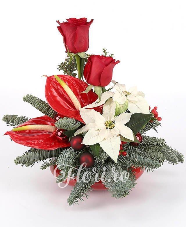 2 trandafiri rosii, 2 anthurium roșu, 2 flori poinsettia, 5 globulețe, 2 hypericum roșu, brad