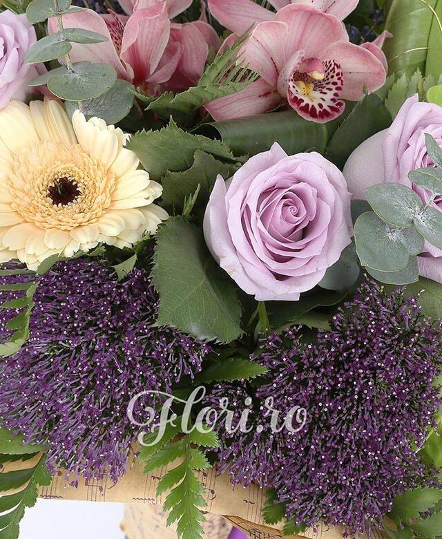 3 trandafiri roz, 3 gerbera crem, 1 cymbidium roz, 3 trachelium mov, 2 anthurium verde, lavanda, verdeață