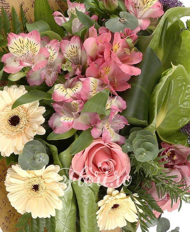 2 trandafiri roz, 3 alstroemeria roz, 2 trahelium mov, 2 santini verde, 3 gerbera crem, 1 cymbidium roz, 2 anthurium verde, eucalypt, aspidistria, frunze anturium, feriga