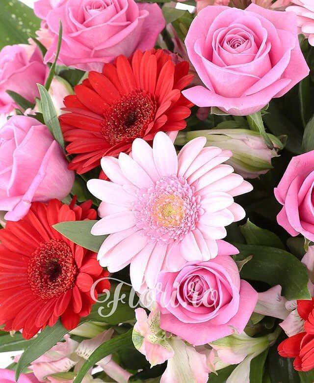 19 trandafiri roz, 5 gerbera roșie, 4 gerbera roz, 5 alstroemeria roz, aspidistra, 1 monstera