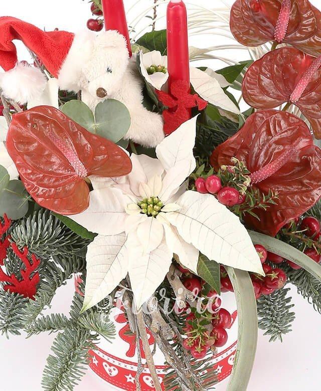4 anthurium roșu, 4 hypericum, 3 poisenția, curly, 1  tilandsia, 1 suport ceramic