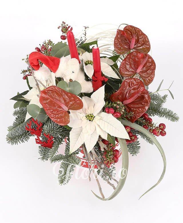 anthurium roșu,  hypericum roșu,  poisenția, curly,  tillandsia, vas ceramic