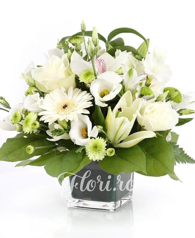 5 trandafiri albi, 5 gerbera albă, cupe cymbidium alb, 2 crini albi, 5 lisianthus alb, 3 santini verde, 3 alstroemeria albă, 2 santini alb, verdeață