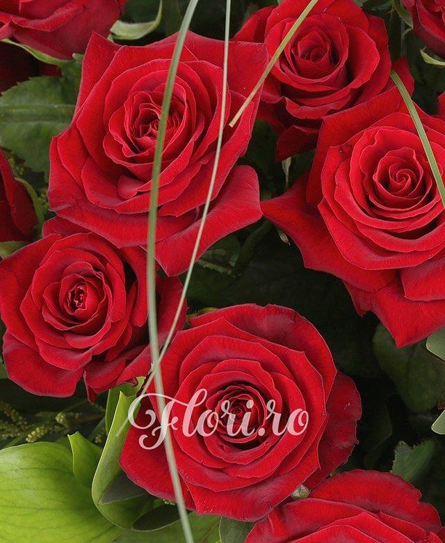 39 trandafiri roșii, verdeață