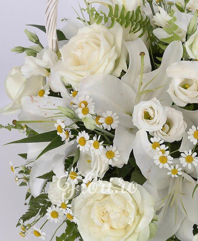 cos, 2 crini albi, 5 lisianthus alb, 5 trandafiri albi, 5 frezii albe, musetel
