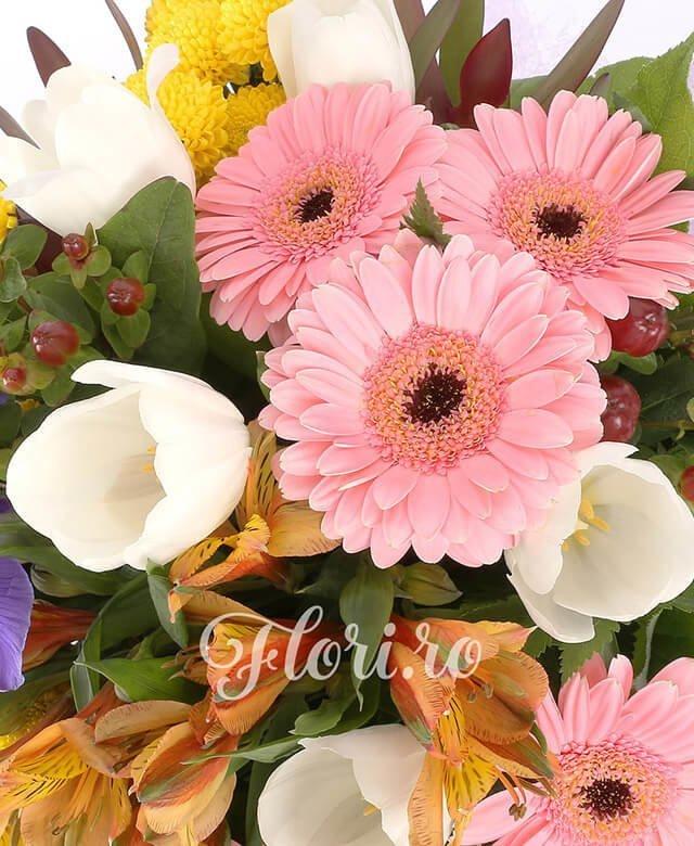 5 gerbera roz, 5 lalele albe, 5 iris mov, 5 hypericum roșu, 5 santini crizantemă galbenă, 5 alstroemeria portocalie, verdeață