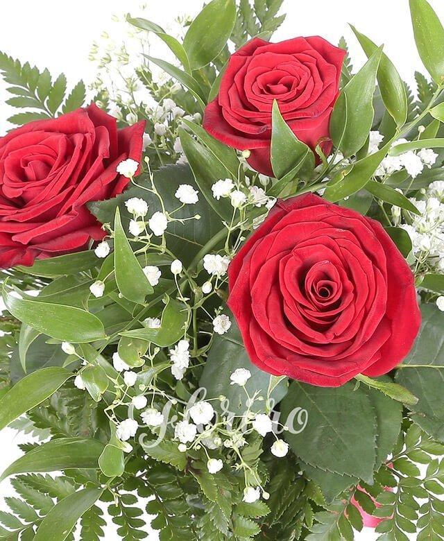 3 trandafiri rosii, ruscus, gypsophila
