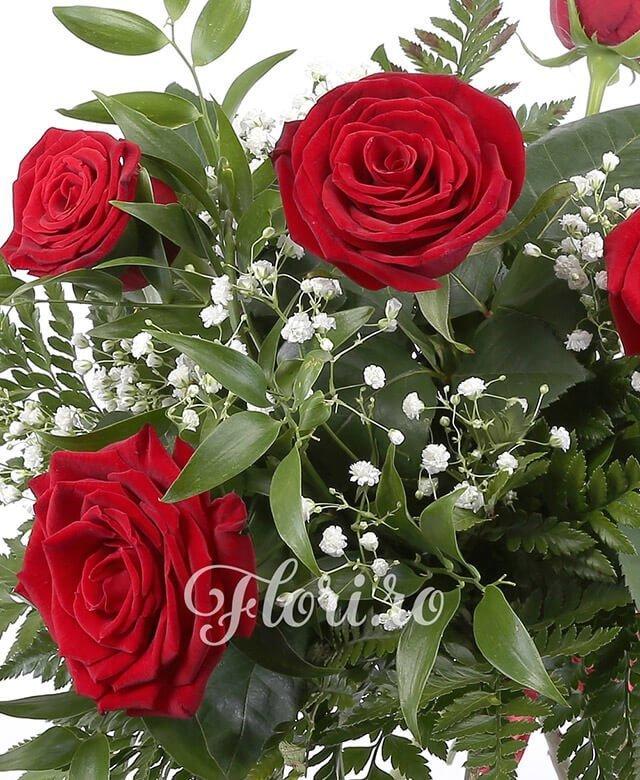 5 trandafiri roșii, verdeață, gypsophila