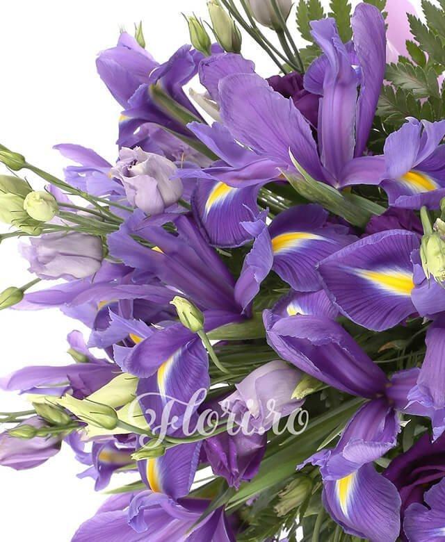 10 lisianthus mov, 15 iris mov