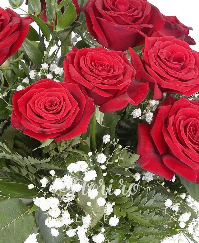 9 trandafiri rosii, ruscus, gypsophila