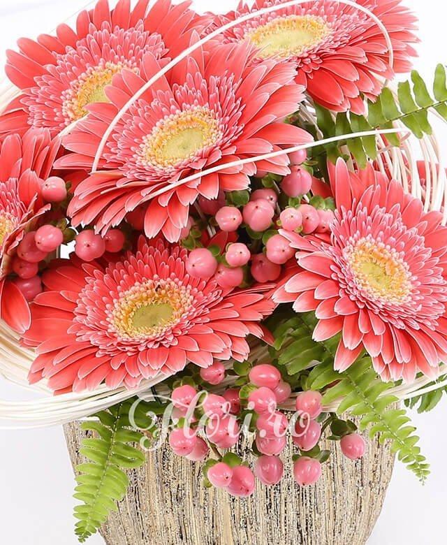 7 gerbera rosie, 5 hypericum rosu, curly, feriga