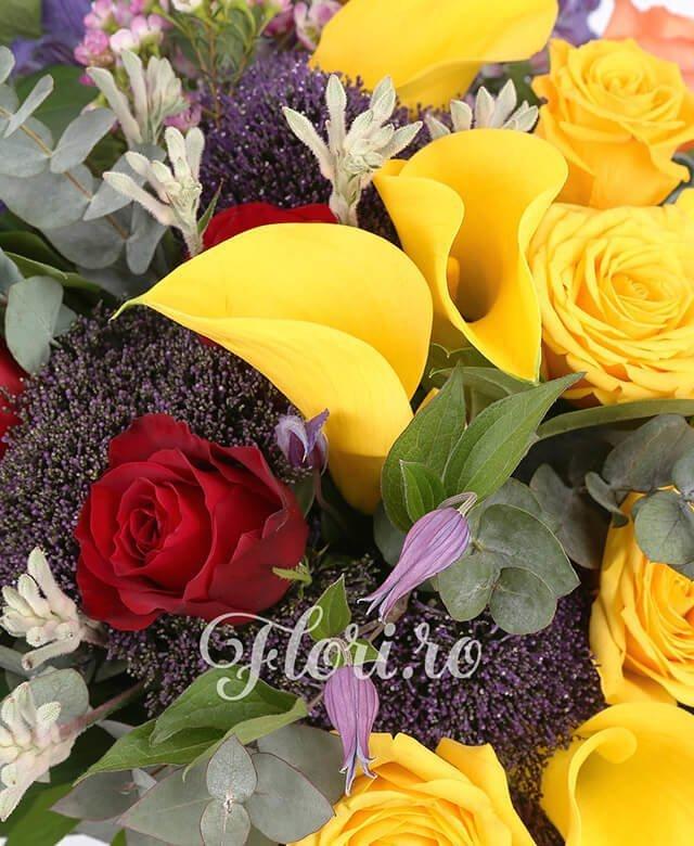 3 trandafiri portocalii, 4 trandafiri galbeni, 3 trandafiri rosii, 5 cale galbene, 3 trahelium mov, 2 anigozantos, 2 anturium verde, waxflower, clematis, aspidistra, eucalypt, salal