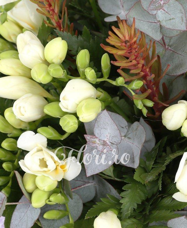 35 frezii albe, leucadendron, eucalypt, salal
