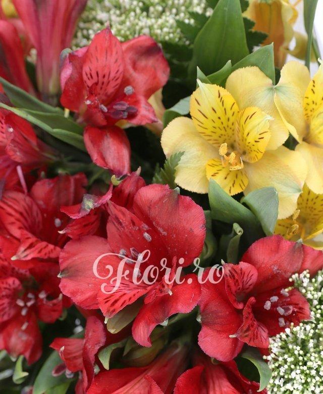 8 alstroemeria grena, 5 alstroemeria galbenă, 4 trachelium alb