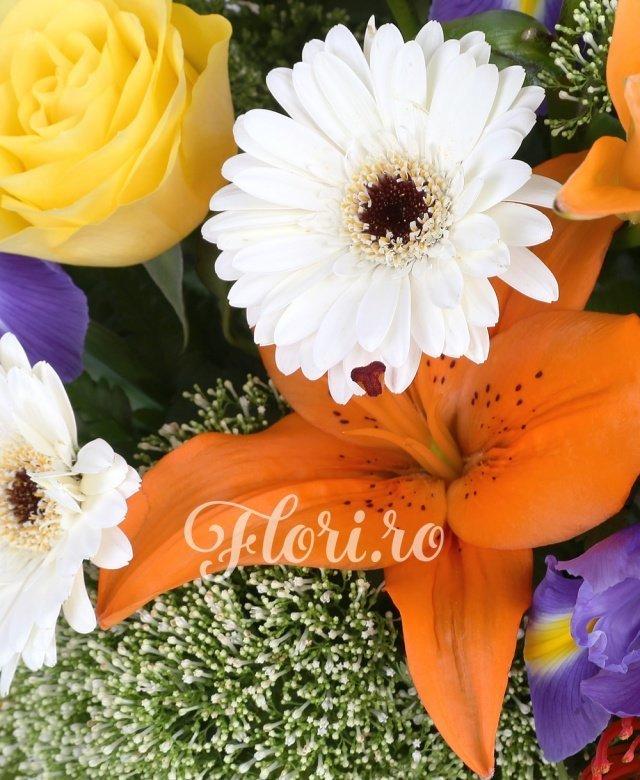 2 crini portocalii, 7 trandafiri galbeni, 5 iris mov, 4 gerbera albă, 3 leucospermum, 3 trachelium alb, verdeață