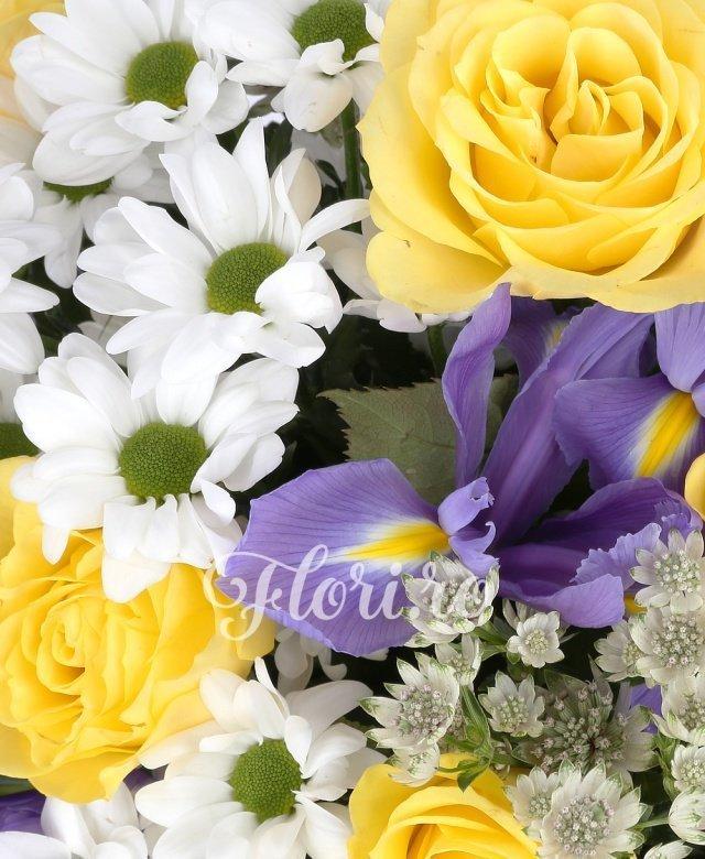 9 trandafiri galbeni, 10 irisi mov, 4 crizanteme albe, astrantia, verdeata