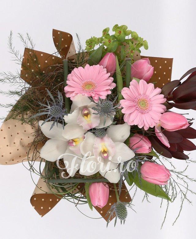 2 gerbera roz, 2 leucadendron, 7 lalele roz, eryngium, cupe cymbidium alb, verdeață