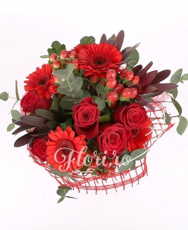 4 gerbera rosii, 5 trandafiri rosii, 2 hypericum, 2 leucadendron, eucalipt, veredeata