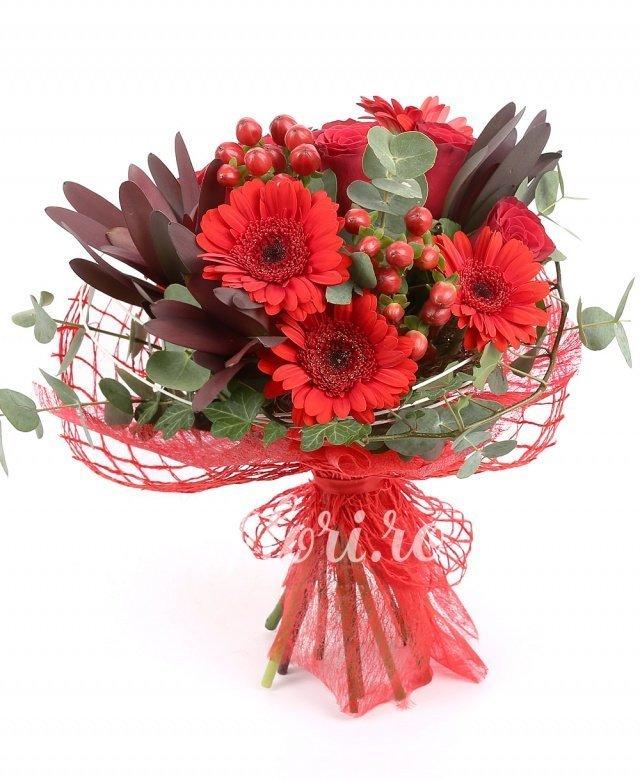 4 gerbera rosii, 5 trandafiri rosii, 2 hypericum, 2 leucadendron, verdeață