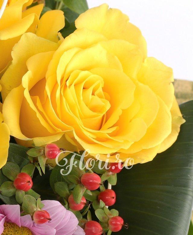 3 trandafiri galbeni, 3 hypericum rosu, 3 garoafe rosii, 2 crizanteme roz, aspidistra, panicum, eucalypt, salal, monstera, curly, cuib