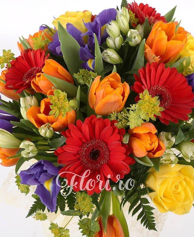 10 lalele portocalii, 7 gerbera rosii, 7 iris mov, 5 trandafiri galben, 5 alstroemeria alba, bupleurum