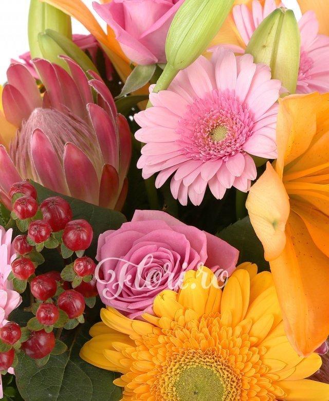 2 crini portocalii, 4 gerbera roz, 3 trandafiri roz, 3 trandafiri galbeni, 3 gerbera galbene, 3 hypericum roșu, 2 proteea, verdeață
