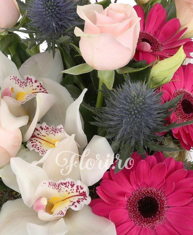 5 trandafiri roz, 2 eryngium, 3  gerbera ciclam, 1 cymbidium alb, 3 brunia, 2 lisianthus roz, beargrass, cuib