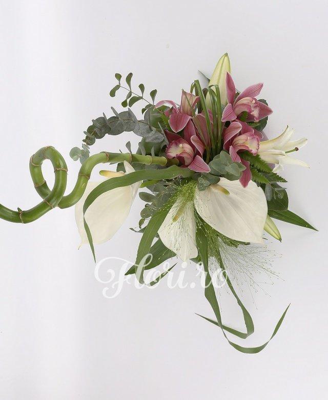 3 anthurium alb, 1 cymbidium grena, 1 crin alb