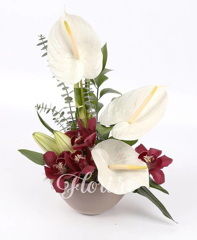 3 anthurium alb, cupe cymbidium grena, 1 crin alb, 1 bambus, verdeață