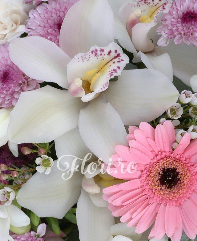 3 trandafiri roz, 3 gerbera roz, 7 garoafe crem, 10 frezii albe, 2 waxflower, 3 santini roz, 5 cupe orhidee albe cymbidium, 3 astilbe rosii, 3 panicum, 3 eucalypt, 3 salal, cos rachita