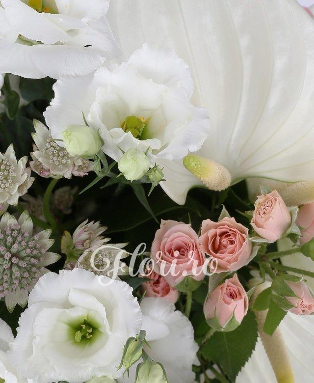 3 anthurium alb, 3 miniroze roz, 3 lisianthus alb, 3 trandafiri albi, 5 astrantia alba, 10 salal, cuib
