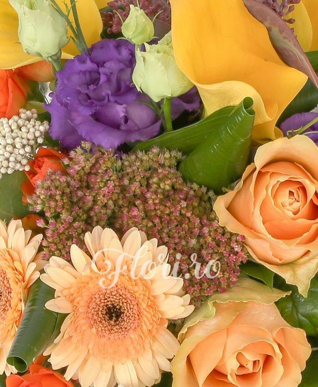 3 trandafiri portocaliu somon, 2 minitros portocaliu, 4 cale galbene, 1 lisianthus mov, 2 gerbera banan, 2 floare orez, 3 sedum, 7 aspidistra