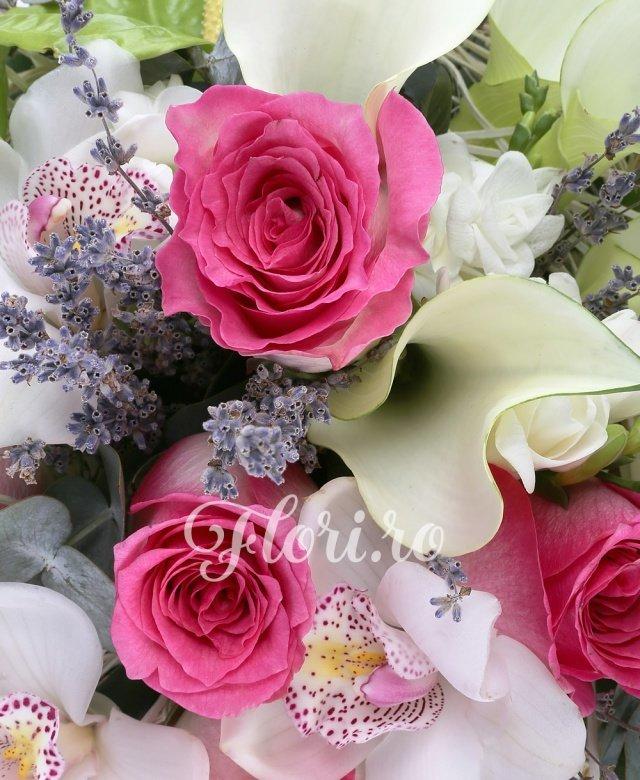 5 trandafiri ciclam, 5 cale albe, 3 anthurium verde, 3 cupe orhidee cymbidium albe, 5 frezii albe, 1/2 pachet levantica, 3 eucalypt, cuib
