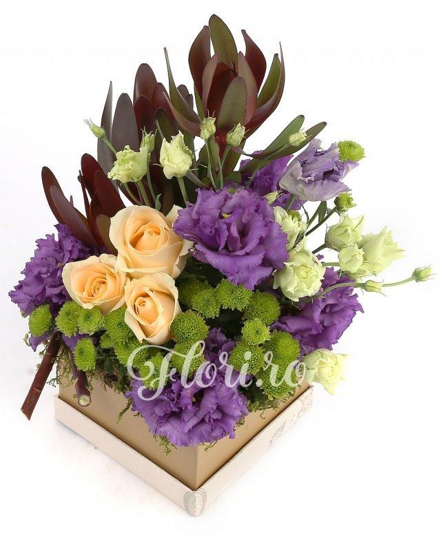 3 trandafiri crem, 3 lisianthus mov, 5 santini verde, verdeață
