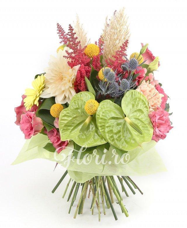 2 anthurium verde, 5 astilbe roșii, 5 garoafe, 3 lisianthus roz, 5 craspedia, 5 gerbera galbene, 2 eryngium, 2 dalii crem, verdeață