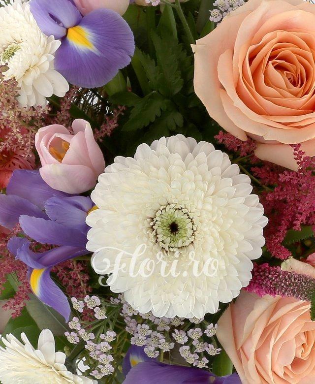 3 trandafiri crem, 3 gerbera albe, 5 iris mov, 3 floare de orez, 3 astilbe rosii, 5 veronica rosii, 5 lalele roz, 2 alstroemeria rosii, 5 eucalypt, cuib