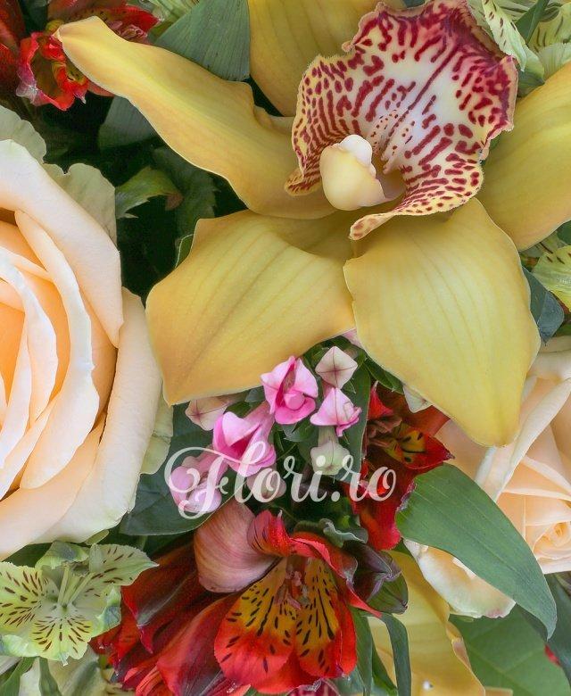5 trandafiri, 7 orhidee cymbidium galbene, 5 alstroemeria galbene, 5 alstroemeria rosii, 5 bouvardia, 5 feriga, 10 salal