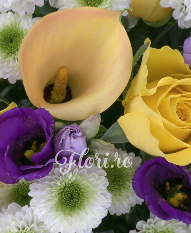 6 cale galbene, 5 santini alb, 5 trandafiri galbeni, 5 lisianthus mov, 15 salal