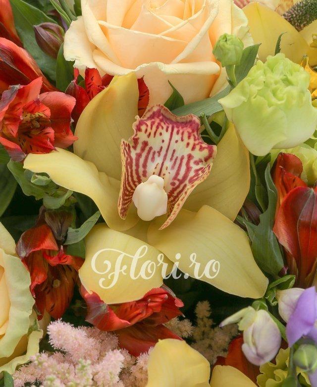10 trandafiri peach avalanch, 5 veronica roz, 6 cupe cymbidium galbene, 3 astilbe roz, 8 frezii mov, 6 lisianthus verde, 3 alstroemeria galbene, 5 alstroemeria rosii, 15 salal