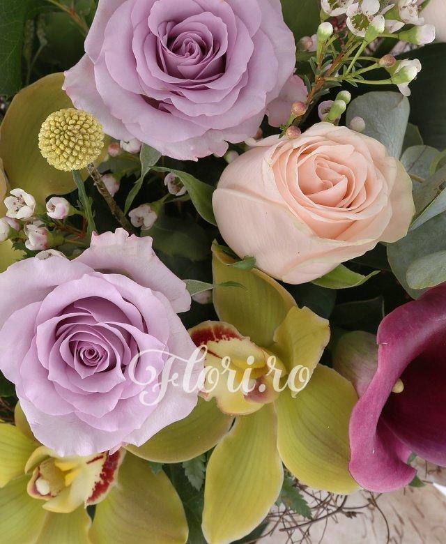 3 trandafiri mov, 2 trandafiri crem, 3 cale rosii, 3 cupe orhidee cymbidium, 1 waxflower alb, 2 schimia, 3 aspidistra, 1 aralia, 2 craspedia, 1 eucalypt, cuib