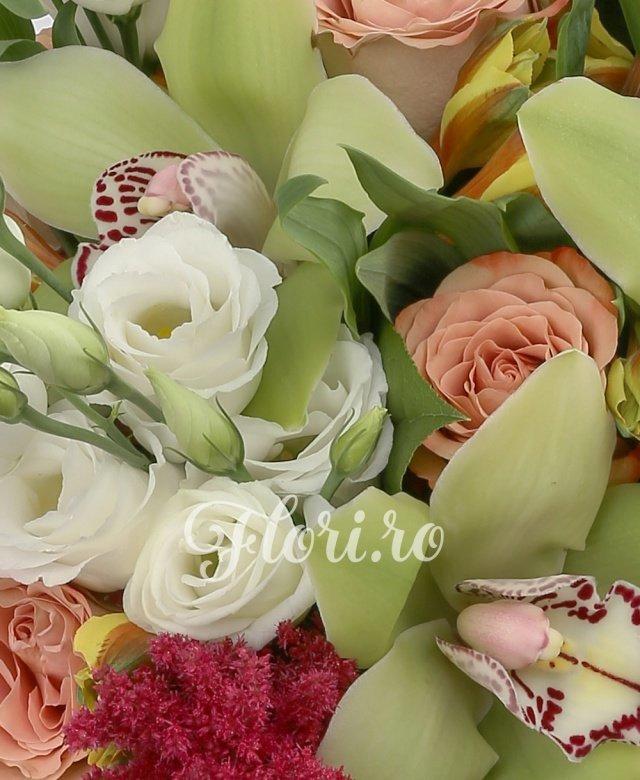 5 lisianthus alb, 7 trandafiri capucino, 5 alstroemeria galbena, 5 cupe orhidee cymbidium verzi, 5 astilbe rosii, 5 salal