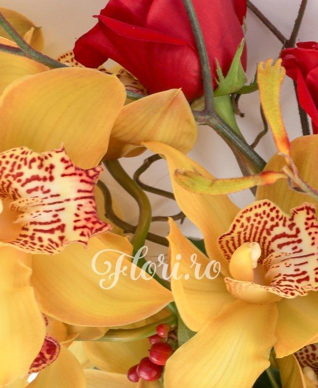 1 orhidee cymbidium, 3 trandafiri rosii, 3 hypericum rosu, 1 anigozanthos, 1corilius, 2 eucalypt, 1 aralia, 3 salal