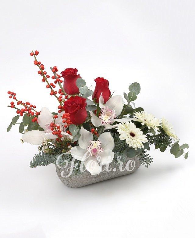 3 trandafiri roșii, cymbidium alb, 3 gerbera albă, ilex, waxflower, brad, verdeață, vas