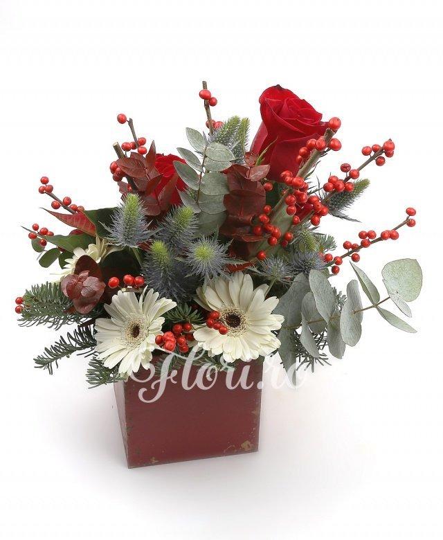 3 trandafiri roșii, 3 gerbera albe, poisenția, 3 eryngium, ilex, brad, verdeață