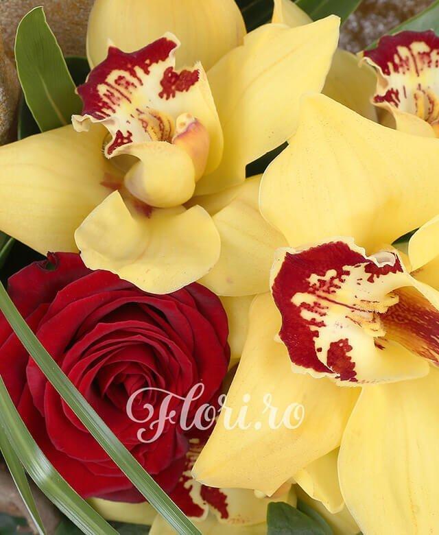 cymbidium galben,  trandafiri roșii,  hypericum roșu, corylus, filodendron, verdeață