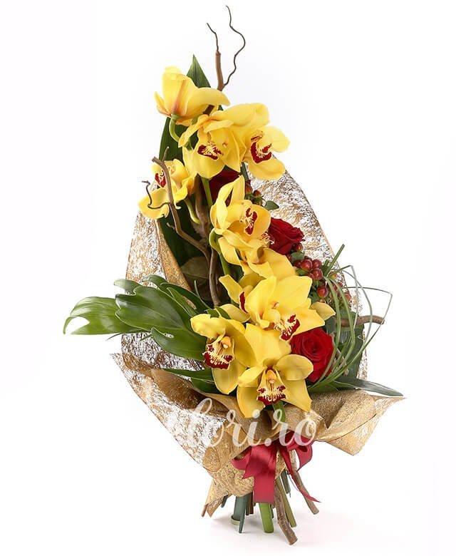 1 cymbidium galben, 3 trandafiri roșii, 3 hypericum roșu, corylus, filodendron, verdeață