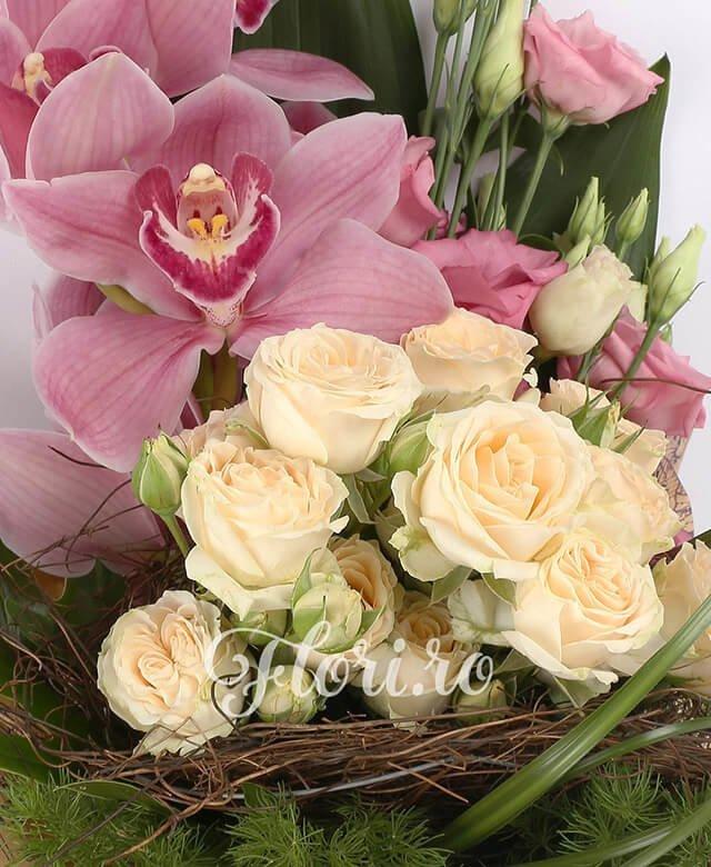 1 cymbidium roz, 3 lisiantus roz, 3 miniroze crem, aspidistra, filodendron, suport cuib, asparagus, beargrass