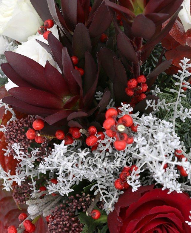 3 trandafiri rosii, 2 ilex, 2 anthurium rosii, 3 leucadendron, 3 lisianthus alb, 2 schimia, brad, eucalypt, cos