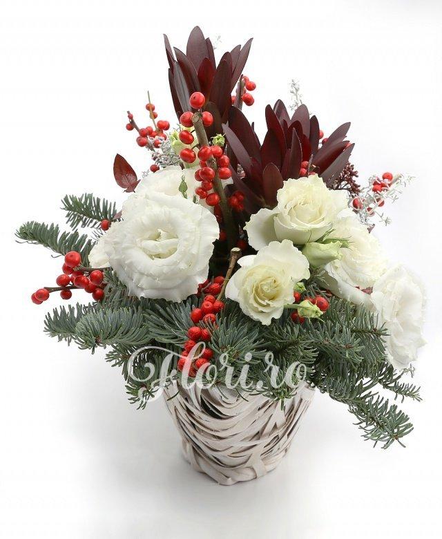 3 trandafiri roșii, 2 ilex, 2 anthurium roșii, 3 leucadendron, 3 lisianthus alb, 2 schimia, verdeață