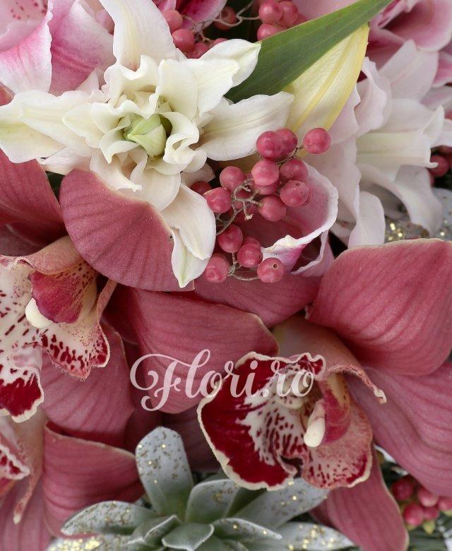 3 cupe cymbidium rosii, 2 echeveria albe, 1 piper rosu, 2 crini imperiali roz, brad, eucalypt, vas ceramic